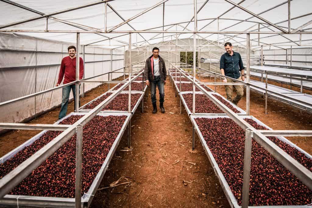 Yunnan Coffee Traders team